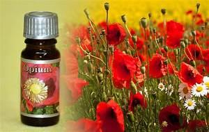Duftöl Selber Machen : duft l opium kerzen duft l kerzen gie en kerzen selber machen die ~ Orissabook.com Haus und Dekorationen