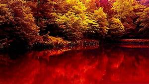 Nature autumn lake forest red beauty wallpaper | 1920x1080 ...