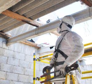 apec environmental asbestos services analysis