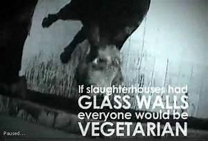 """गौमाता ही भारत माँ की पहचान है: """"If slaughterhouses had ..."""