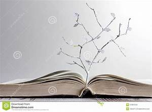open book and paper letters tree concept stock photo With letters to open when book