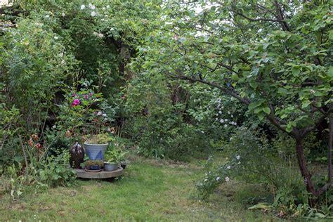 Wilder Garten  Heute Macht Der Himmel Blau