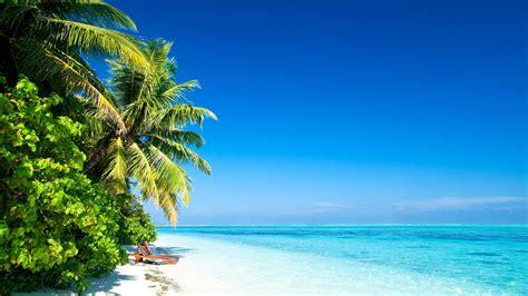 tropical caribbean island beach paradise great place