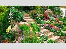 Идеи за градината Obzavejdanenet