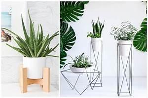 Support Plante Intérieur : 14 id es pour d corer sa maison avec des plantes vertes ~ Teatrodelosmanantiales.com Idées de Décoration