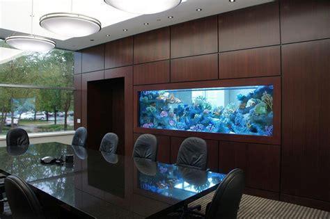 Aquariums   Aqua Creations
