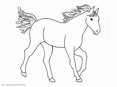 Horse Coloring Horses Mane Flying Pages War