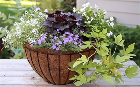 vasi cosmetici vasi on line vasi da giardino vaso fiori