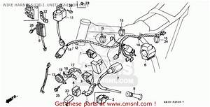 Honda Xr 250 Parts Manual