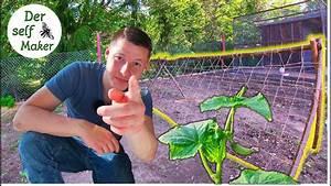 Rankgerüst Selber Bauen : rankger st f r deine kletterpflanzen selber bauen ~ A.2002-acura-tl-radio.info Haus und Dekorationen