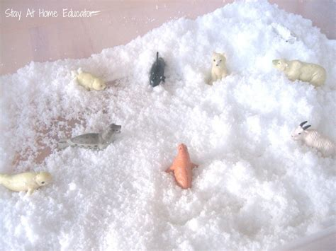 Eight Arctic Themed Preschool Activities