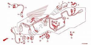 Wire Harness  Battery For Honda Cbf 125 2012   Honda Motorcycles  U0026 Atvs Genuine Spare Parts Catalog