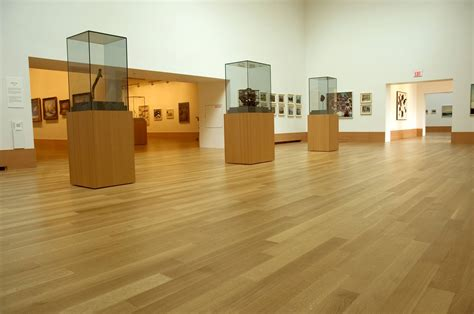 art gallery  ontario barwood floors