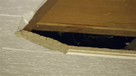 video    safely remove asbestos tile ehow