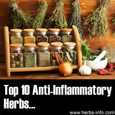 Top 10 Anti Inflammatory Herbs. Interest Free On Purchases Bay Area Backflow. Granite Outlet Alexandria Heavy Feeling Legs. Wealth Management Firms Boston. Upholstery Cleaning Utah Sharing Video Online. Used Fiat Convertible For Sale. Life Insurance To Cover Funeral Expenses. Bathroom Remodel Pittsburgh Dr Dolitsky Ent. Starving Students Orange County