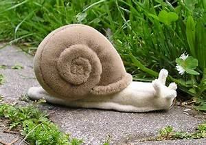Schnecken Mit Haus : elli 39 s animals april 2011 ~ Lizthompson.info Haus und Dekorationen