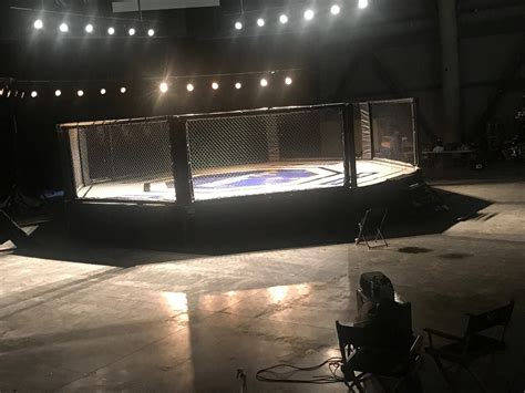mma fighting ring daily rental pro fight shop