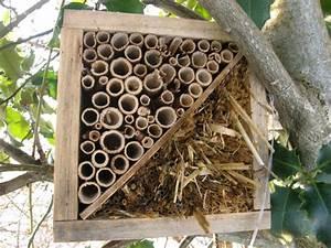 Abri à Insectes : hotel pour les insectes restaurant pour les oiseaux ~ Premium-room.com Idées de Décoration
