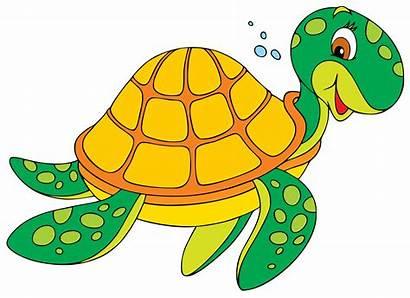 Turtle Clipart Cartoon Animation Swimming Swim Schildpad
