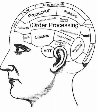 Brain Coloring Worksheet Human Pages Pdf Anatomy