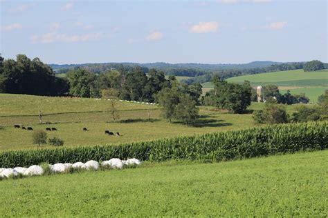 Farmland values down across Corn Belt, but Ohio still