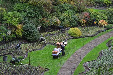 Gardeners Winter by Bustling Time For Butchart Gardens As Winter Nears