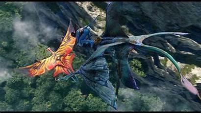 Avatar Pc Wallpapers Leonopteryx Backgrounds Toruk Makto