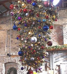 Exploring The Upside Down Christmas Tree Phenomenon