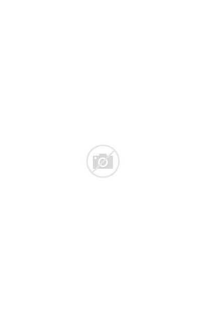 Lobster Quadrille Medium Vignet Remix Anna Illustration