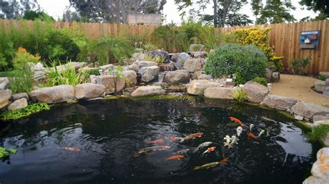 how to build a small pond in your backyard how to build a koi pond