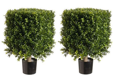 boxwood topiary trees artificial boxwood bushes square topiary faux topiary 1773