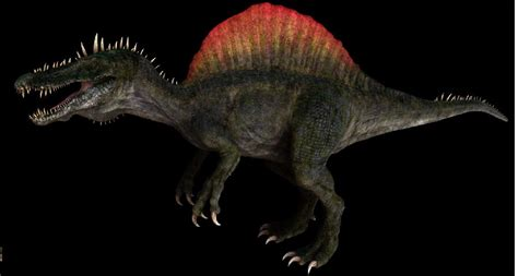 Spinosaurus Pictures & Facts