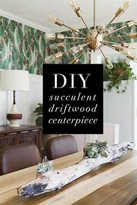 Diy, Driftwood, Succulent, Centerpiece, U00bb, Jessica, Brigham