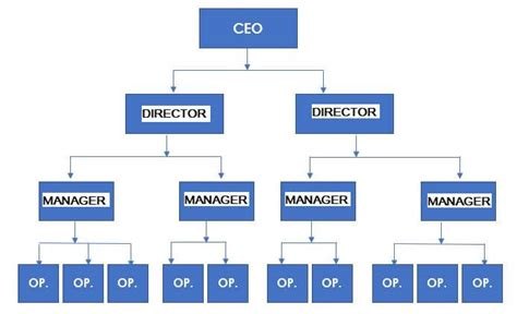 5 Organizational Structure Examples