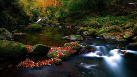 stream hd wallpaper background images