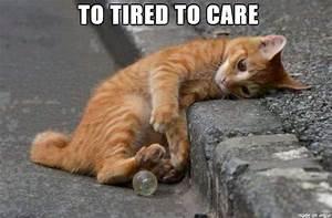 20 Tired Meme - Thug Life Meme