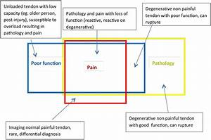 Revisiting The Continuum Model Of Tendon Pathology  What