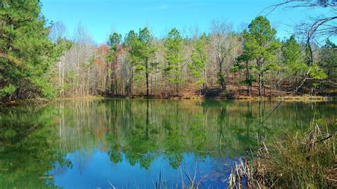 Get store opening hours, closing time, addresses, phone numbers, maps and directions. 300 acres in Cullman County, Alabama