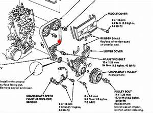 Image Result For Honda Accord Timing