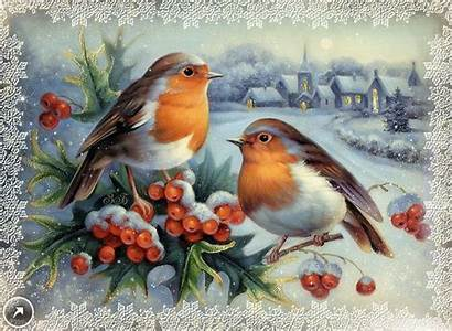 Christmas Bird Pencil Ru Fotki Yandex Birds