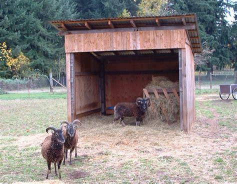sided shed plans   build diy