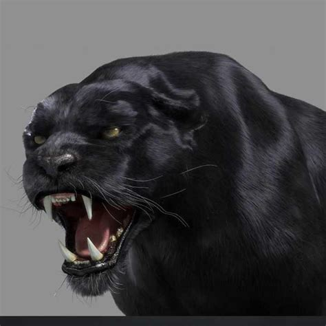 T'challa, heir to the hidden but advanced kingdom of wakanda. Black Panther Tiger 3D Model