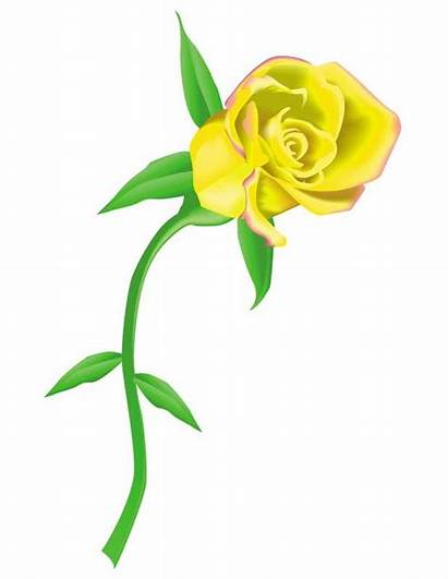 Yellow Rose Roses Clip Clipart Vines Cliparts