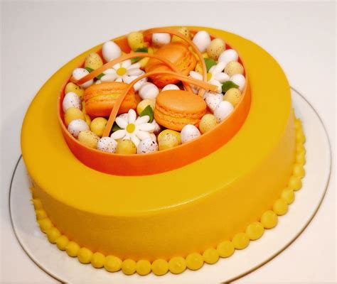 mango mousse sponge cake decorated  mango chocolate