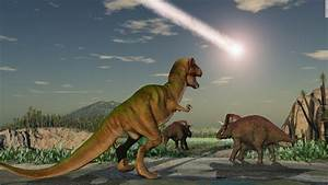 Mammals almost went extinct with the dinosaurs, study ...