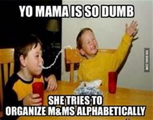 yo mamma so stupid she climbed over a glass wall to see ...