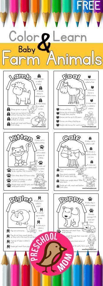 316 best farm theme images on 604 | 64a89e52a9790a7e69f166ff0999f265 preschool farm preschool printables