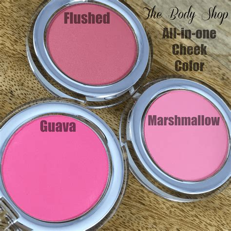 cheek color all in one cheek color from the shop the feminine files