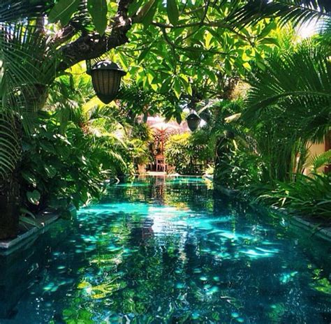 tropical backyards 25 best ideas about tropical pool on pinterest dream pools swiming pool and beautiful pools