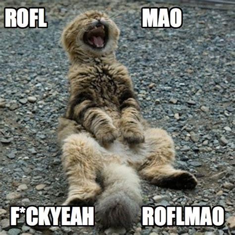 Rofl Meme - rofl mao roflmao cat memes and comedy pinterest cats